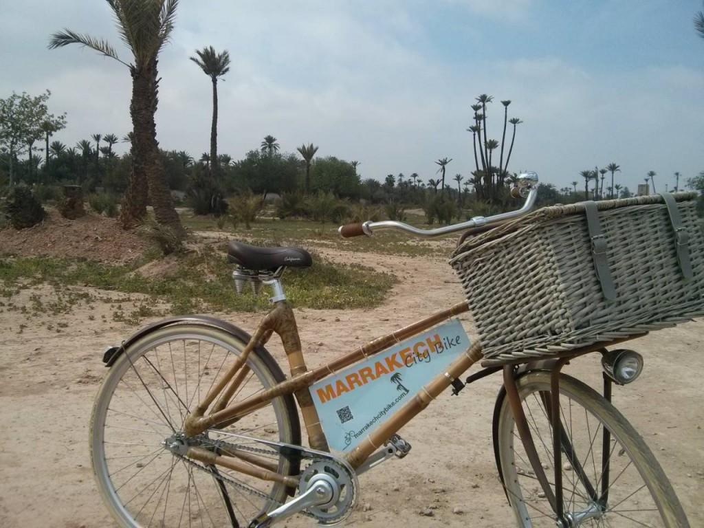Bamboo Bike in the Palmeraie