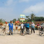 Bikes and Camels