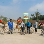 Bikes, quads and camels