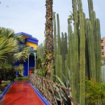 Jardin Majorelle Blue House, Cactus and Path