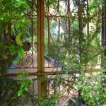 Jardin Majorelle Botanical Garden