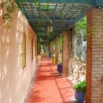 Jardin Majorelle Cactus Garden Path