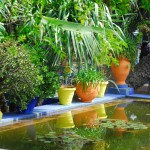 Jardin Majorelle Colourful Pond with blue
