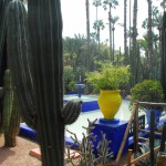 Jardin Majorelle Fountain and Cactusses