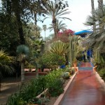 Jardin Majorelle Path to the Blue House