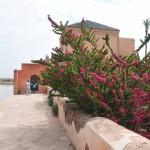 Menara Gardens House