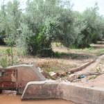 Menara Gardens Irrigation