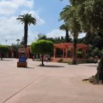 Parc El Harti